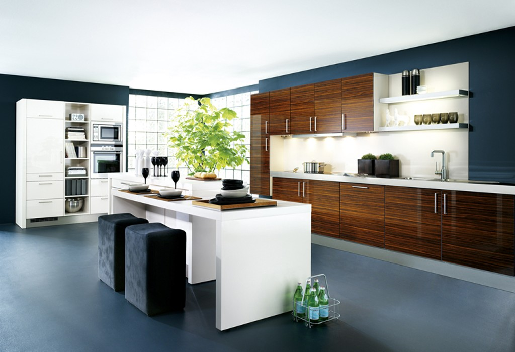 modern-kitchen-cabinets-1