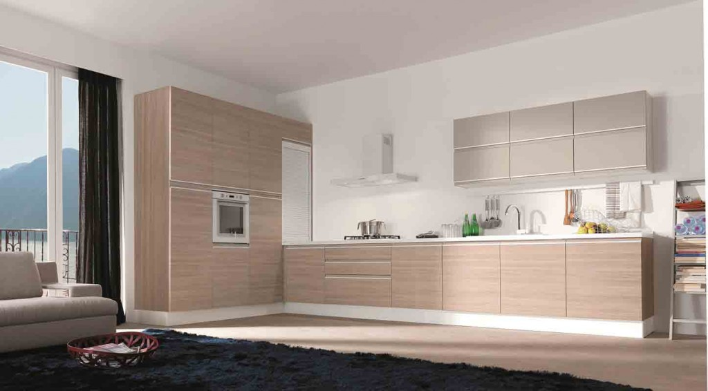modern-kitchen-cabinets-12